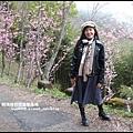 櫻木花道13.JPG