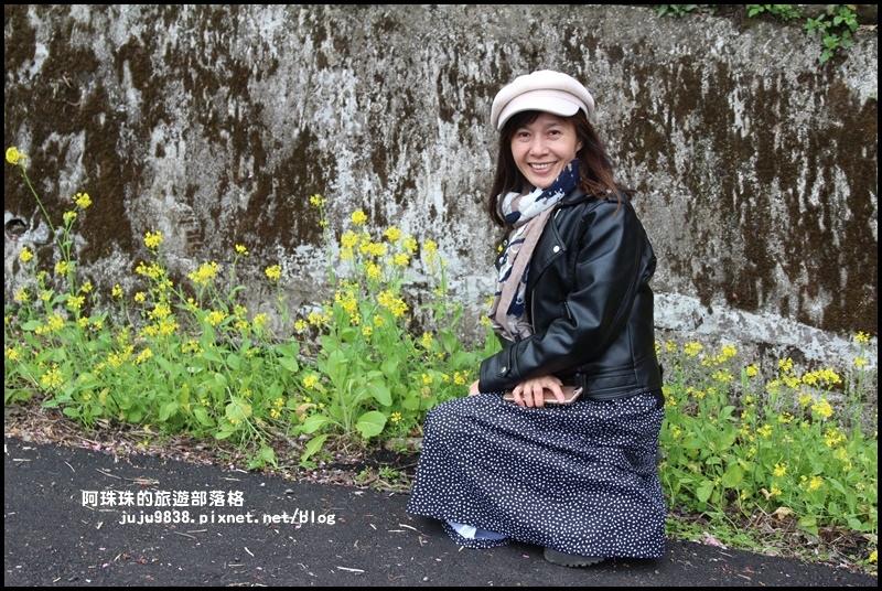 櫻木花道15.JPG