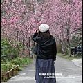櫻木花道7.JPG