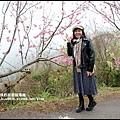 櫻木花道10.JPG