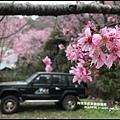 櫻木花道45.JPG