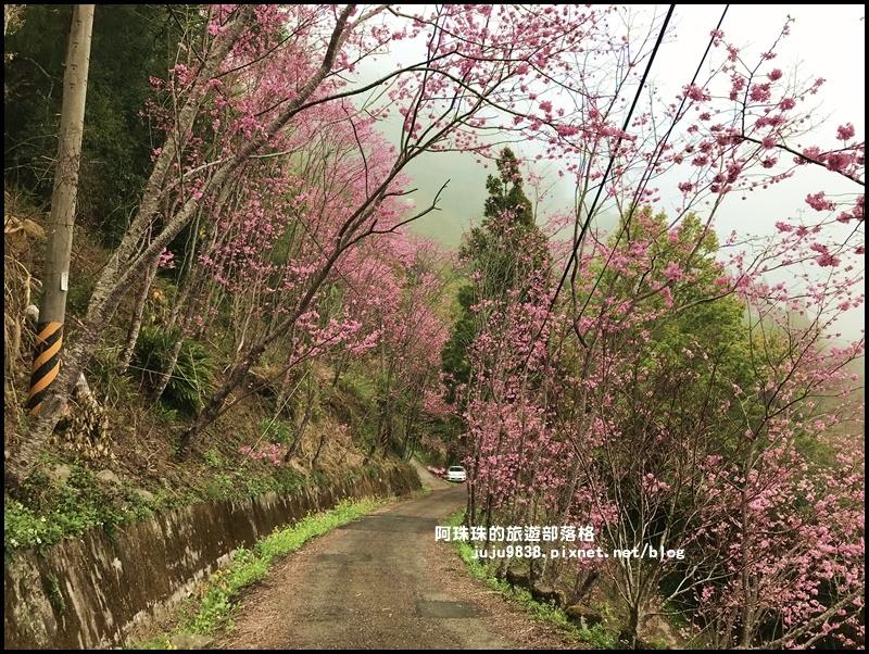 櫻木花道38.JPG