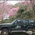 櫻木花道27.JPG