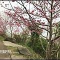 櫻木花道29.JPG