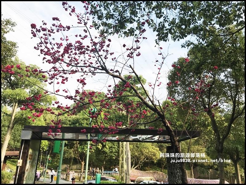 長庚養生村53.JPG