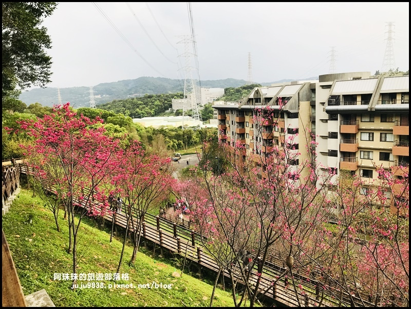 長庚養生村35.JPG