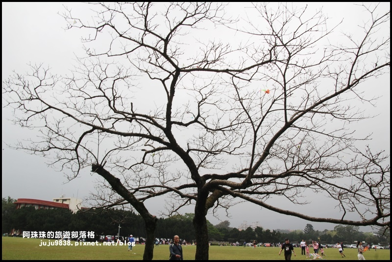 十一份日式宿舍群32.JPG