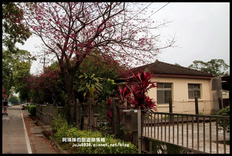 十一份日式宿舍群28.JPG