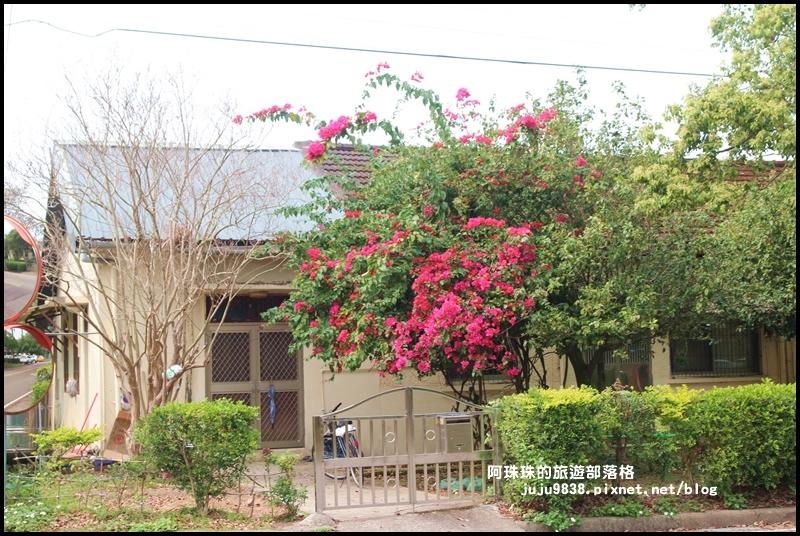 十一份日式宿舍群17.JPG