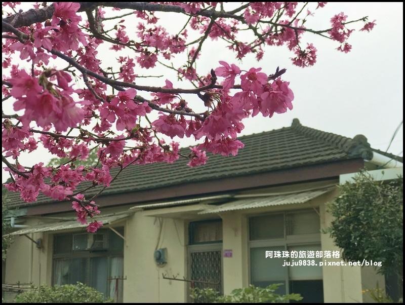 十一份日式宿舍群42.JPG