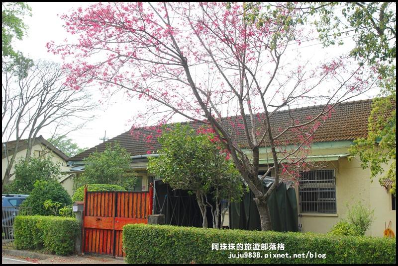 十一份日式宿舍群11.JPG