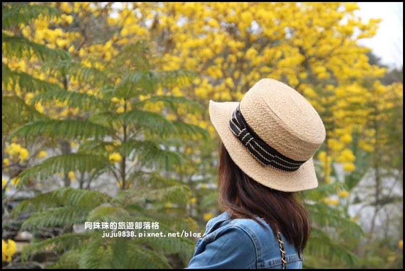 巨埔休閒農場15.JPG