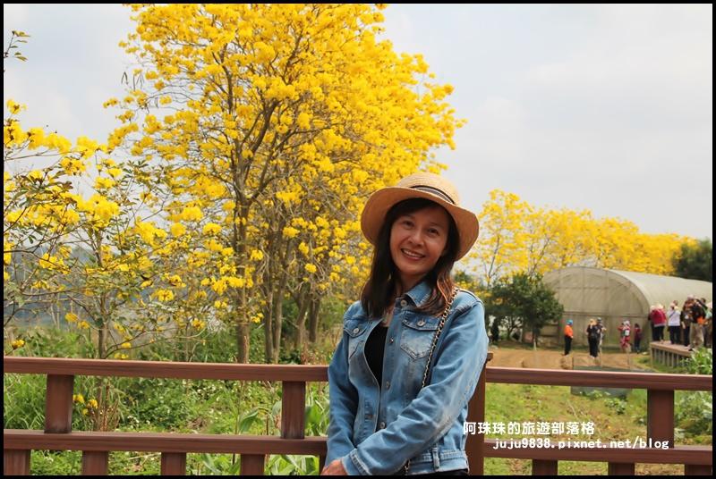 巨埔休閒農場8.JPG