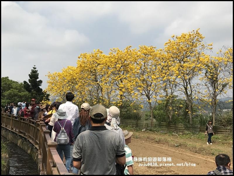 巨埔休閒農場20.JPG