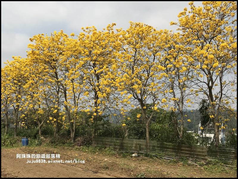 巨埔休閒農場21.JPG