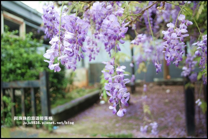 工二路紫藤花8.JPG