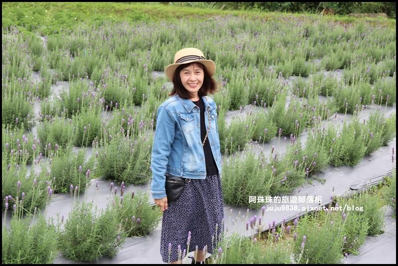 葛瑞絲香草花園22.JPG