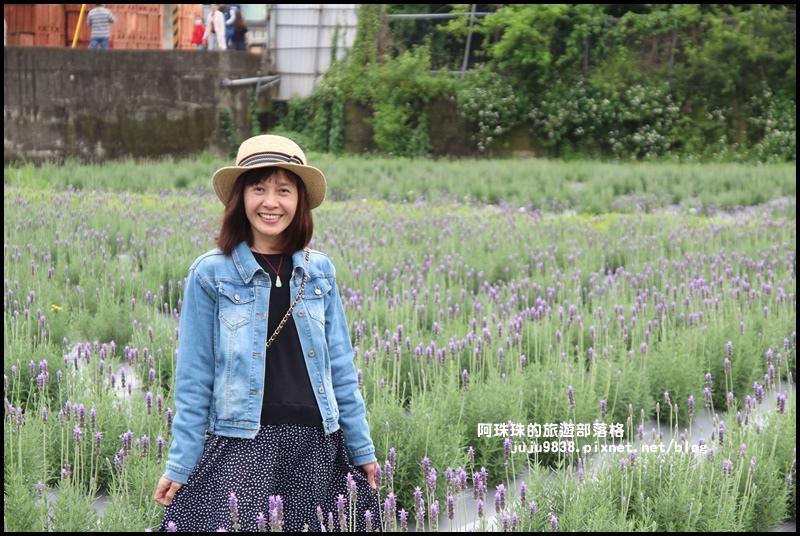 葛瑞絲香草花園14.JPG