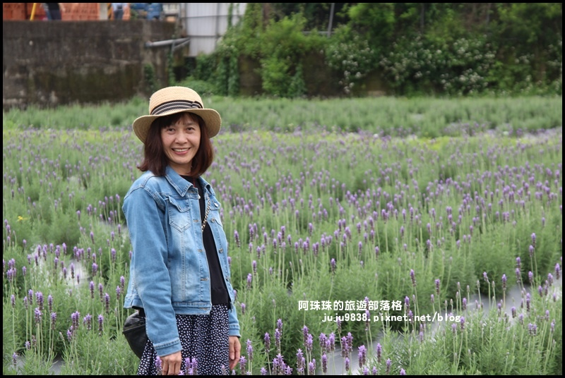 葛瑞絲香草花園12.JPG