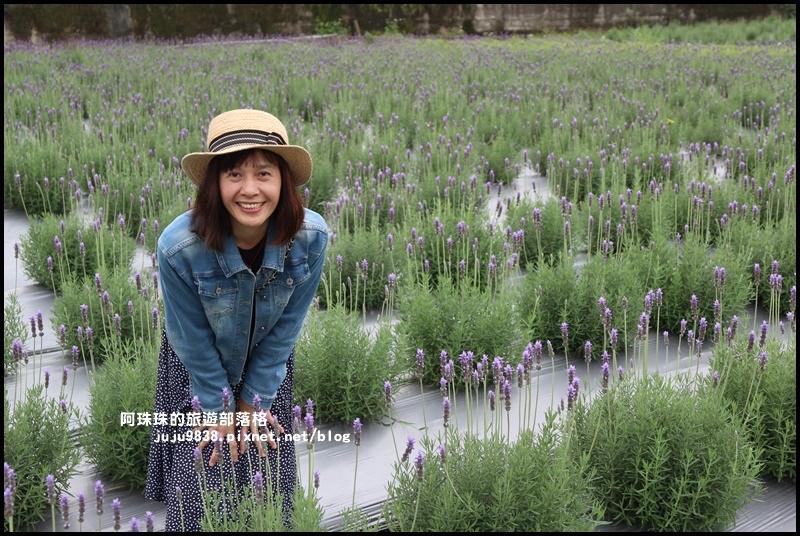 葛瑞絲香草花園11.JPG