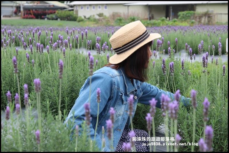 葛瑞絲香草花園9.JPG