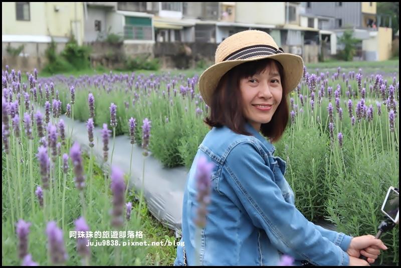 葛瑞絲香草花園8.JPG