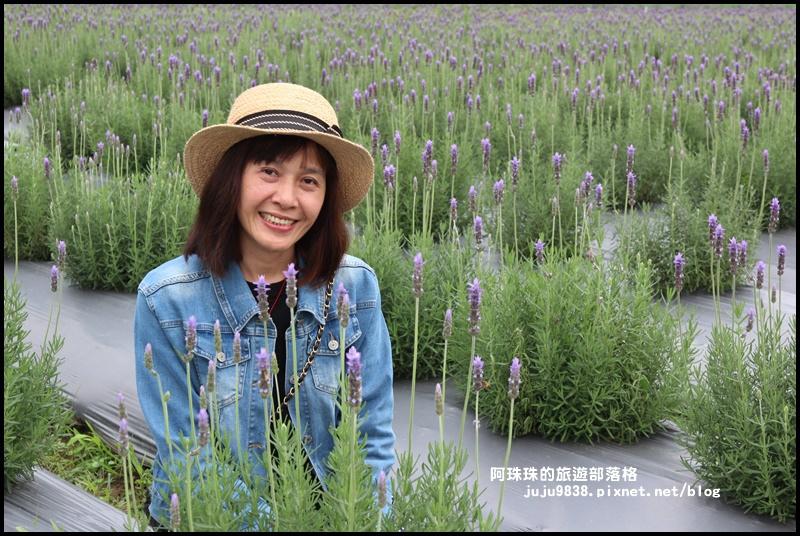 葛瑞絲香草花園1.JPG