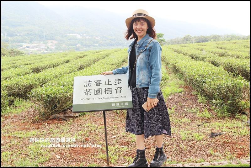 銅鑼茶廠35.JPG