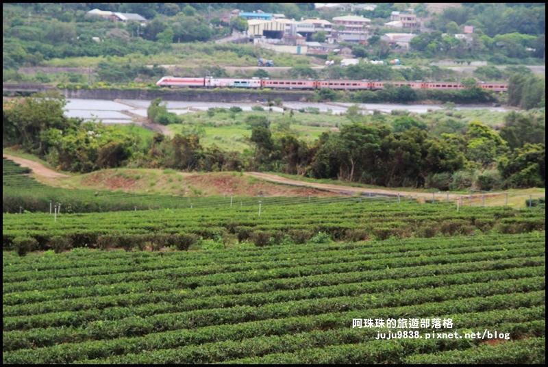 銅鑼茶廠26.JPG