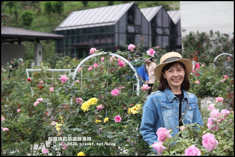雅聞七里香玫瑰森林25.JPG