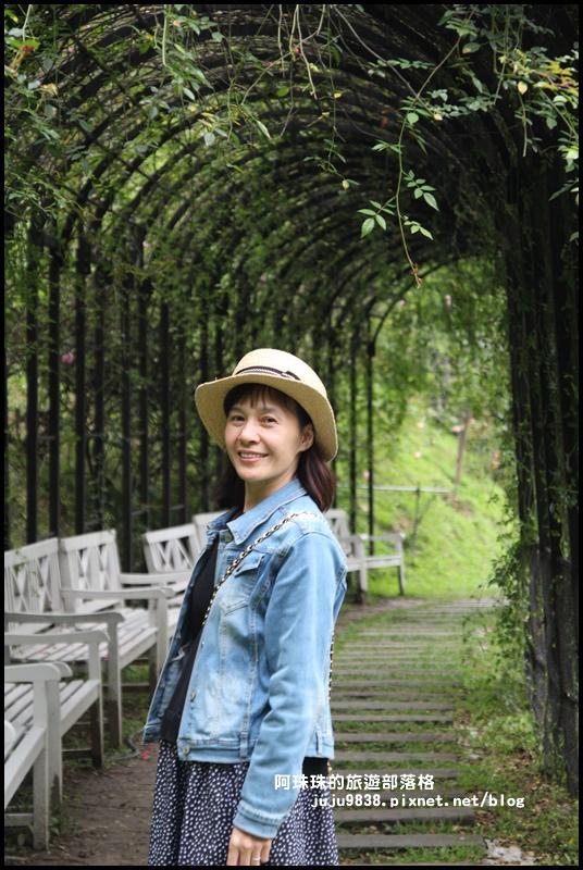 雅聞七里香玫瑰森林17.JPG