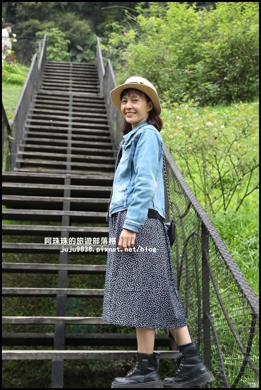 雅聞七里香玫瑰森林13.JPG