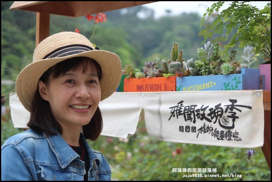 雅聞七里香玫瑰森林7.JPG