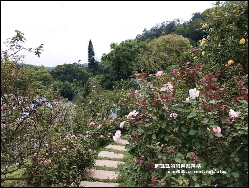 雅聞七里香玫瑰森林32.JPG