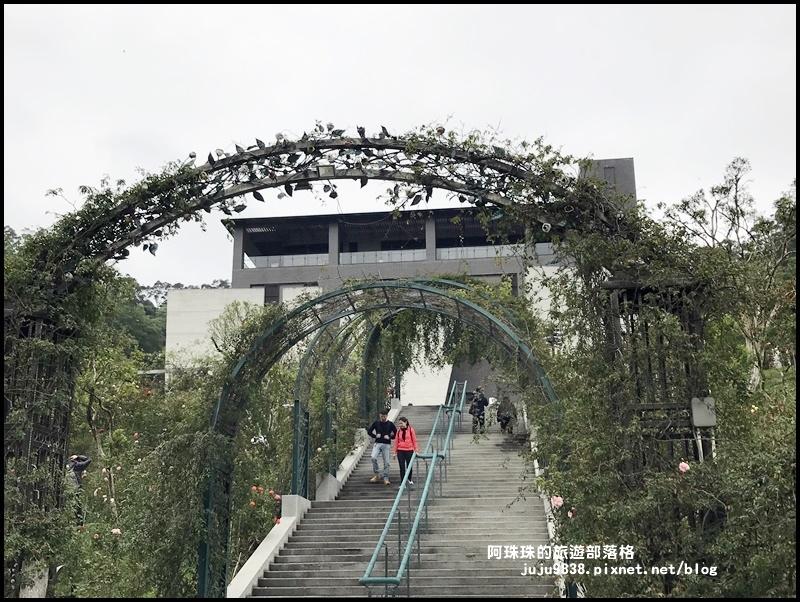 雅聞七里香玫瑰森林27.JPG