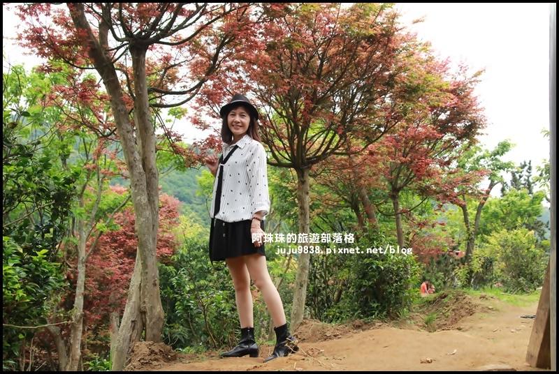 台北奧萬大24.JPG