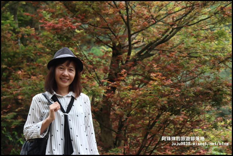 台北奧萬大17.JPG