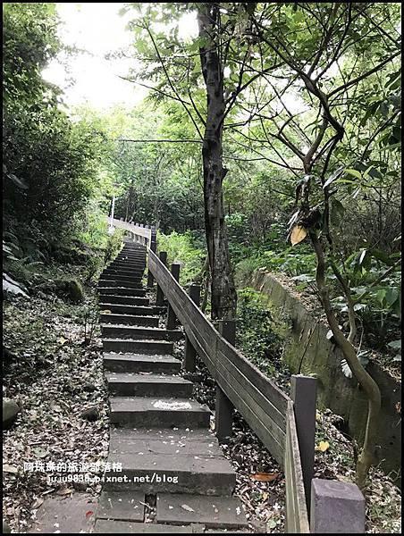 泰山義學坑步道9.JPG