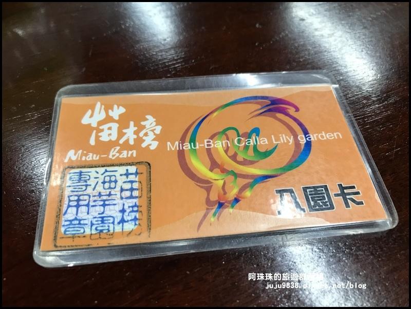 竹子湖海芋季39.JPG