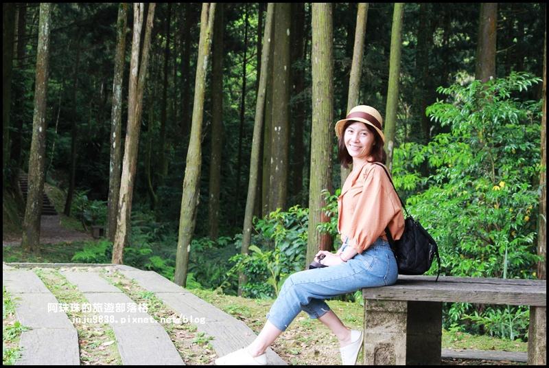 熊空茶園17.JPG