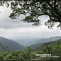 熊空茶園74.JPG