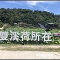 雙溪荷花園10.JPG