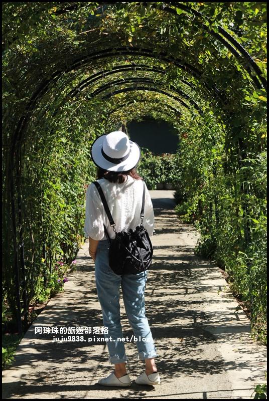 雅聞香草植物園33.JPG