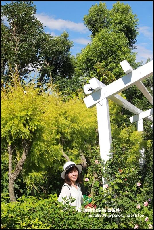 雅聞香草植物園29.JPG