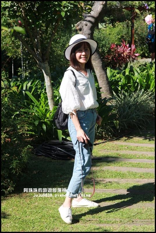雅聞香草植物園24.JPG