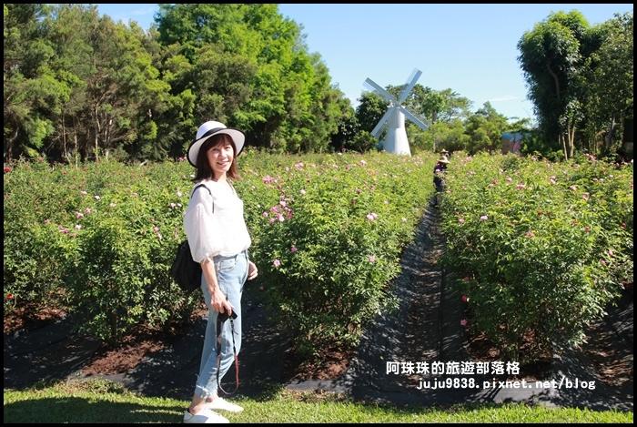 雅聞香草植物園16.JPG