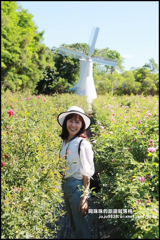 雅聞香草植物園13.JPG