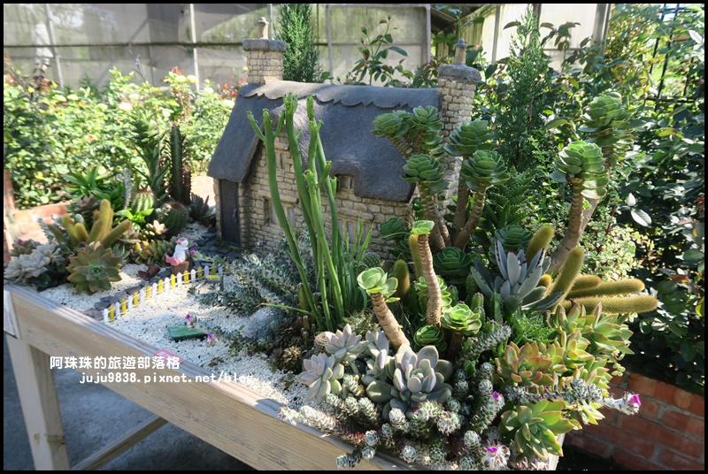 雅聞香草植物園55.JPG