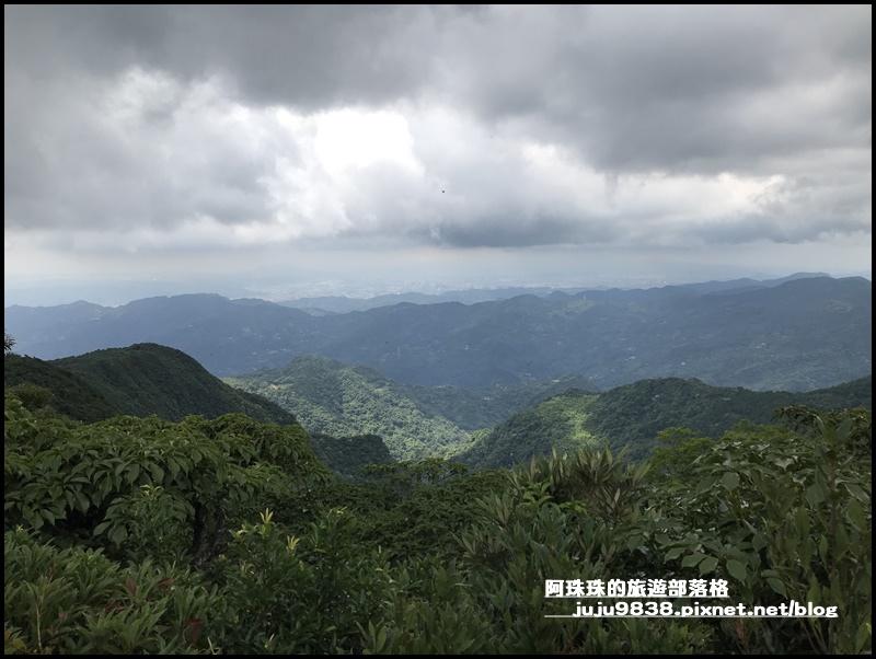 東眼山9.JPG