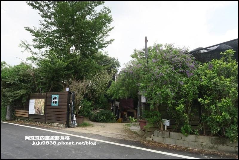 大溪韭菜39.JPG